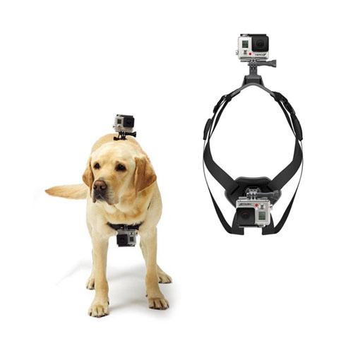 GoPro Hundsele