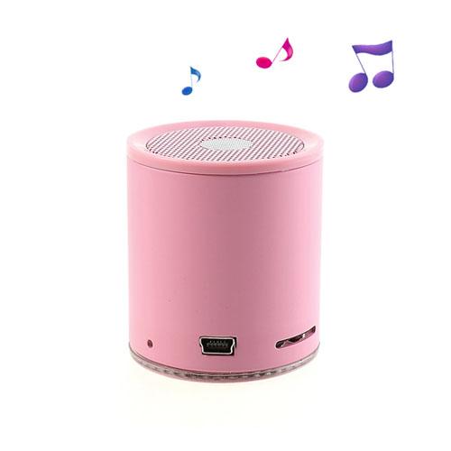 EWA A106 (Rosa) Trådlös Bluetooth-Högtalare med Mikrofon