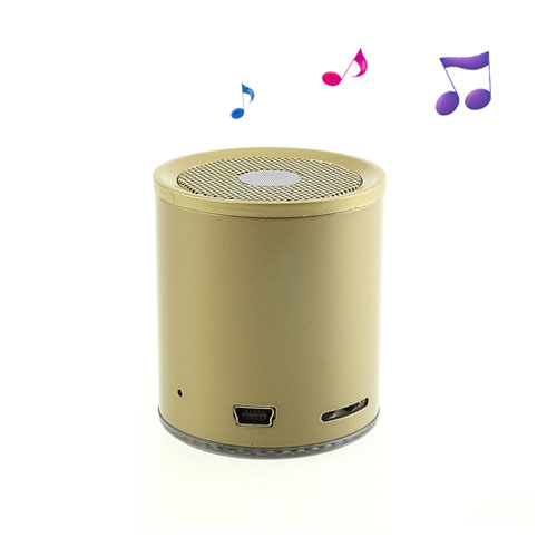 EWA A106 (Ljusguld) Trådlös Bluetooth-Högtalare med Mikrofon